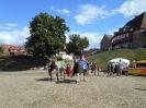 Burgfest_46