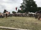 Burgfest Neustadt Glewe 2018