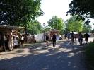 Wikingerfest Neustadt-Glewe 2016
